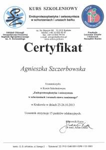 Agnieszka Szczerbowska - terapia barku