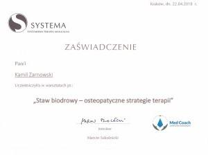staw biodrowy